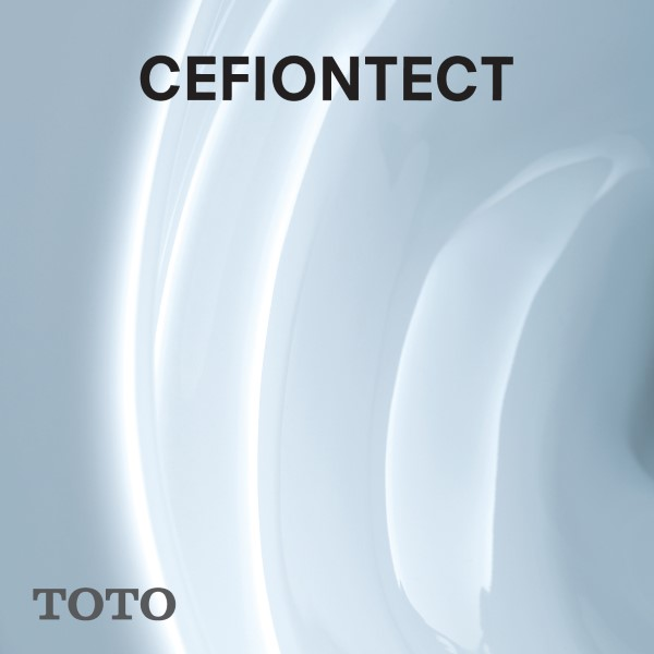 CLEANLINESS - CEFIONTECT